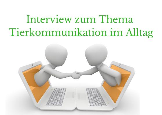 Interview zum Thema Tierkommunikation im Alltag