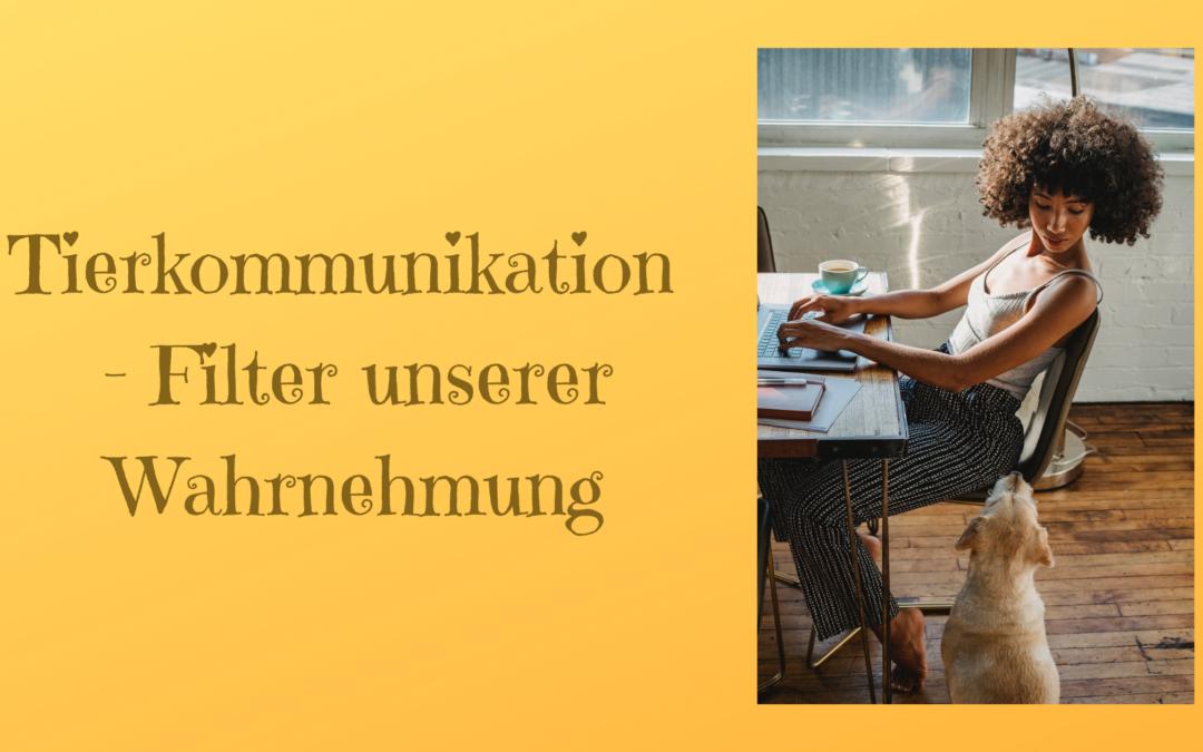 Tierkommunikation – Filter unserer Wahrnehmung